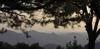 Blick auf den Trifels (Foto. Pfalz.Touristik)