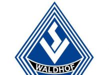 Logo (Foto: SV Waldhof Mannheim 07 e.V.)