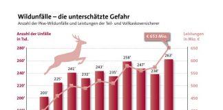 Grafik Wildunfälle (Foto: GDV)