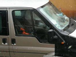 Der Hund ist nach Zeugenaussagen seit mehreren Stunden im Fahrzeug eingeschlossen (Foto: privat)