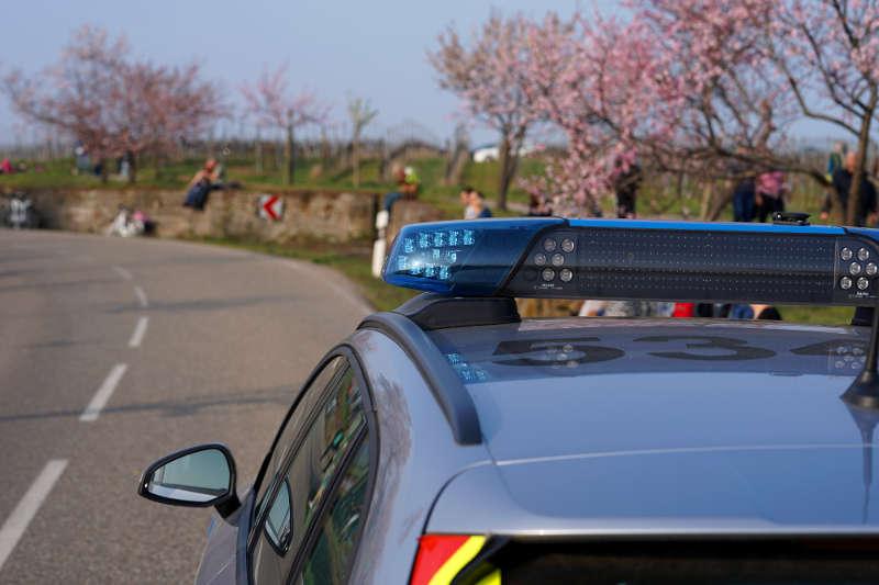Polizeiauto Mandelblüten (Foto: Holger Knecht)