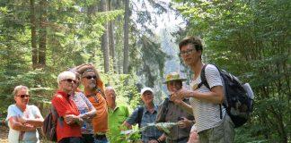 Mit ausgewiesenen und zertifizierten Kennerinnen und Kennern des Biosphärenreservats unterwegs: Führung mit einer Biosphären-Guide im Breitenbach-Tal bei Appenthal (Foto: Biosphärenreservat/frei)