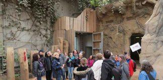 Kuratorin Sandra Reichler informierte im Elefantenhaus über das Erhaltungszuchtprogramm für Asiatische Elefanten