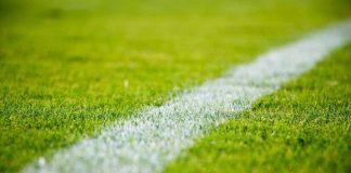 Symbolbild Fußballplatz (Foto: Pixabay StockSnap)