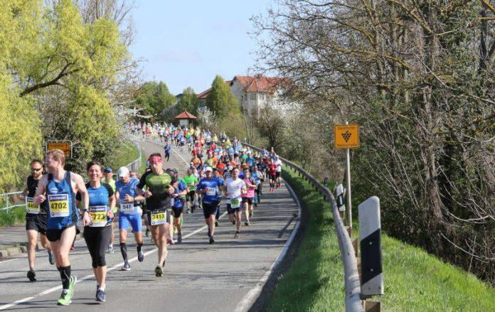 Marathon Deutsche Weinstraße (Foto: Kreisverwaltung Bad Dürkheim)