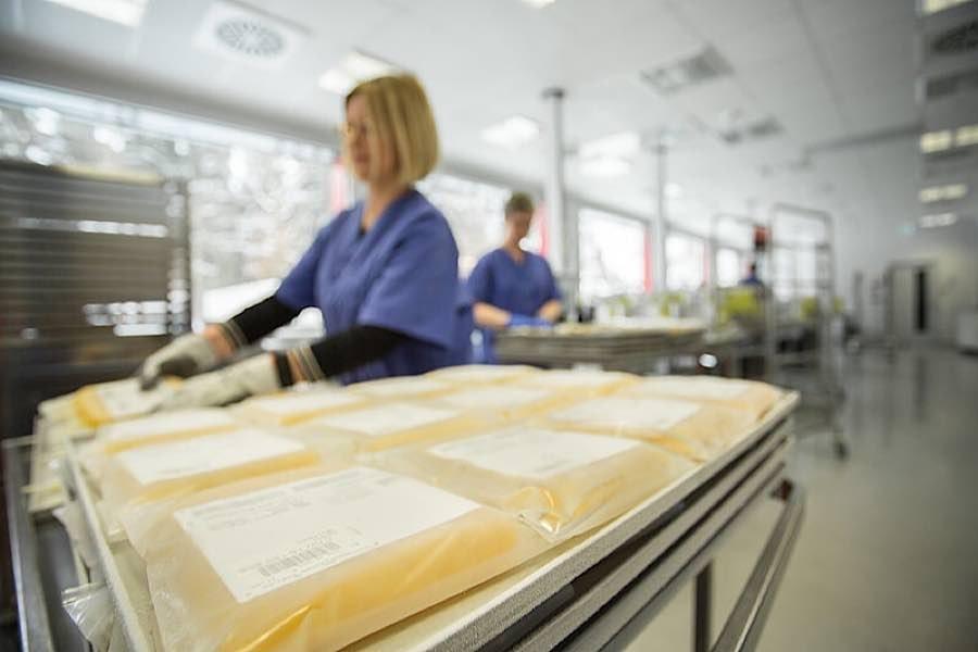 Antikörper aus dem Blutplasma ehemaliger COVID-Patienten können schwer Erkrankten helfen. (Foto: UMM)