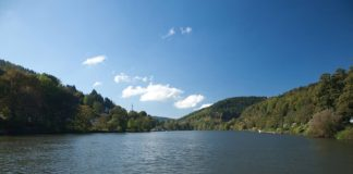 Der Neckar (Foto: Landratsamt Rhein-Neckar-Kreis)
