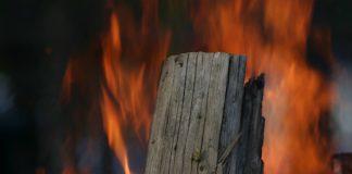 Modelle sollen vorhersagen, wie sich ein Feuer im Wald unter den vorhandenen Bedingungen ausbreitet. (Foto: Gabi Zachmann, KIT)