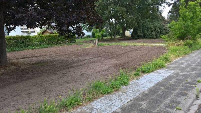 Eine zukünftige Wiesenfläche, die zur Vorbereitung aktuell gefräst wurde. (Foto: Gemeindeverwaltung Haßloch)