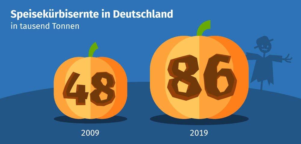 Speisekürbisernte in Deutschland in tausend Tonnen (Quelle: DESTATIS 2020)