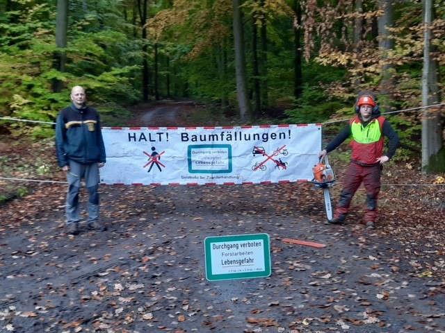 Die Holzerntesaison hat begonnen (Foto: Landratsamt Karlsruhe)