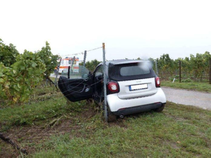Der beschädigte Smart (Foto: Feuerwehr Neustadt)