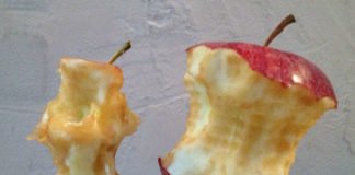 Symbolbild Angenagter Apfel (Foto: Pixabay)