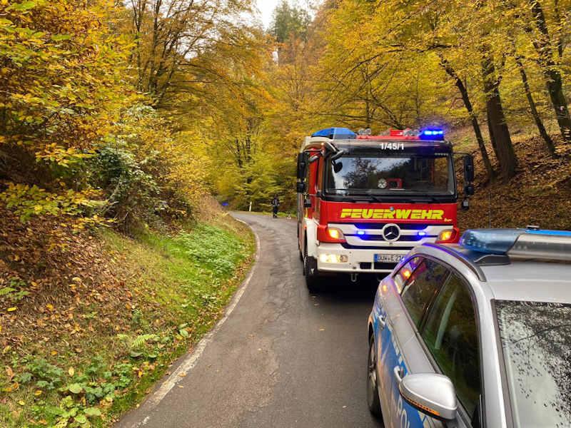 Einsatz (Foto: Presseteam der Feuerwehr VG Lambrecht)