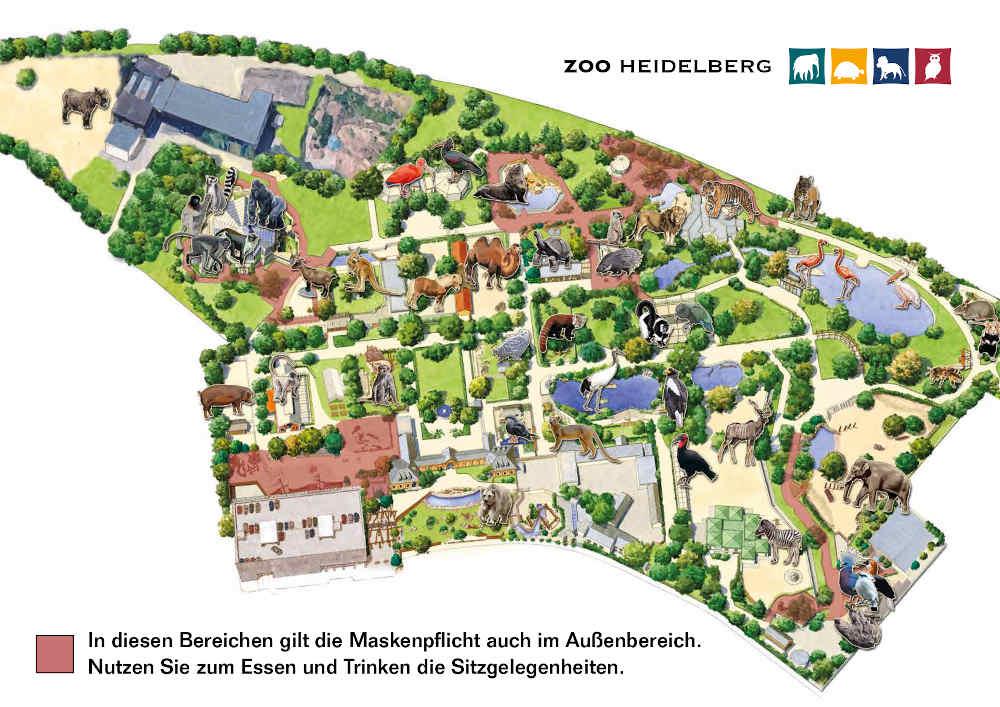 In den markierten Bereichen herrscht Maskenpflicht (Foto: Zoo Heidelberg)