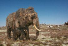 Mammut (© Bildmontage Katharina Kreger-Schwerdt, Grundlage Remie Bakker (Foto Rekonstruktion) und Wilfried Rosendahl (Foto Hintergrund))