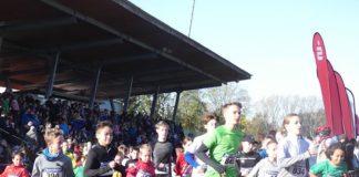 Start des 10km-Laufs 2019 (Foto: Hannes Blank)