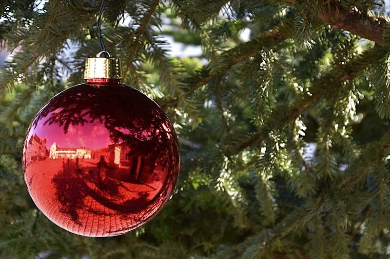 Zu einem schönen Weihnachtsfest gehört für viele Menschen ein hübsch geschmückter Christbaum einfach dazu. (Quelle: Stadt Landau)
