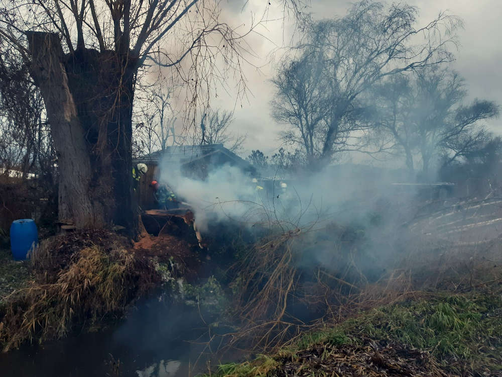 Ein Baum brannte (Foto: Feuerwehr Bad Dürkheim)