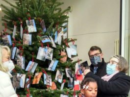 Kinder haben wieder Weihnachtswünsche an einen Tannenbaum gehängt, der in diesem Jahr in der Tourist-Info am Hetzelplatz steht. (Foto: Stadtverwaltung Neustadt)