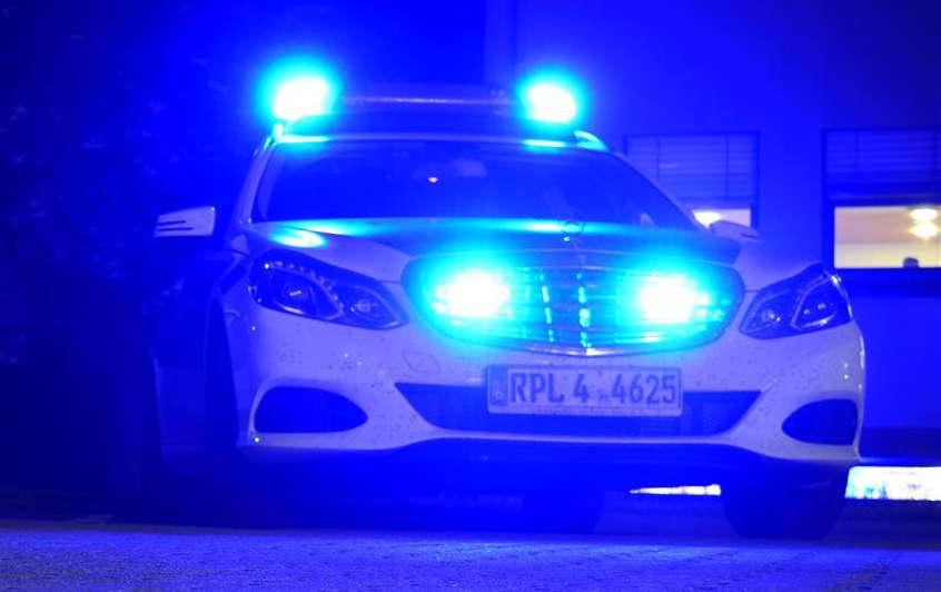 Symbolbild Funkstreifenwagen Polizeiautobahnstation Ruchheim (Foto: Polizei RLP)