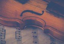 Symbolbild Streicher (Foto: Pixabay/Ylanite Koppens)
