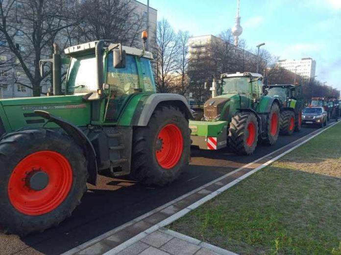 Die Bauern in Berlin - Foto: privat