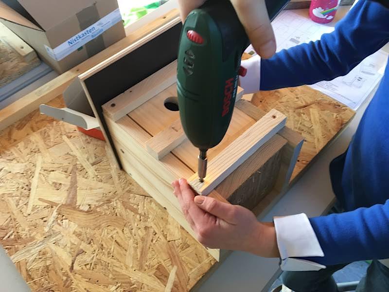 Zum Internationalen Tag des Waldes bietet die Jugendförderung Landau in Kooperation mit dem Forstamt Haardt Vogelnistkästen zum Selberbauen. (Quelle: Landesforsten.RLP.de/Rüdiger Sinn)