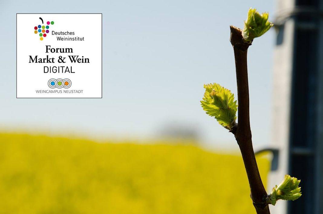Forum Markt & Wein DIGITAL (Foto: Deutsches Weininstitut)