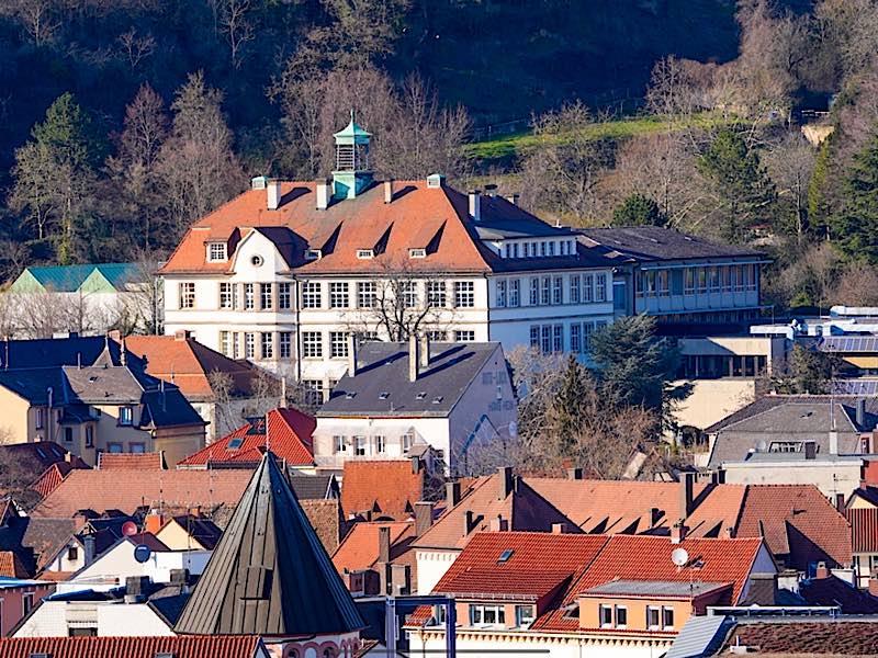 Das Käthe-Kollwitz-Gymnasium in Neustadt an der Weinstraße (Foto: Holger Knecht)