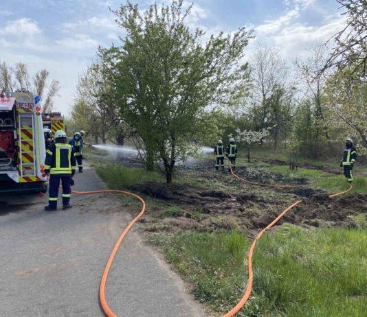 Flächenbrand an der B 39 (Foto: Feuerwehr Neustadt)