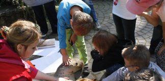 Zooschule (Foto: Zooschule Landau)