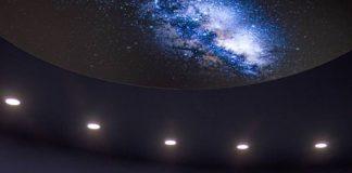Weit-blicken-Raum in der neuen Dauerausstellung (Foto:Pfalzmuseum für Naturkunde)