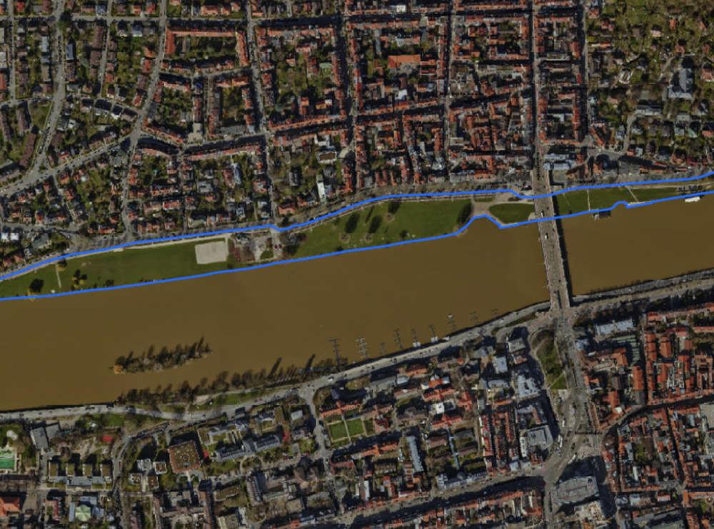 Neckarwiese in Heidelberg (Quelle: Stadt Heidelberg)