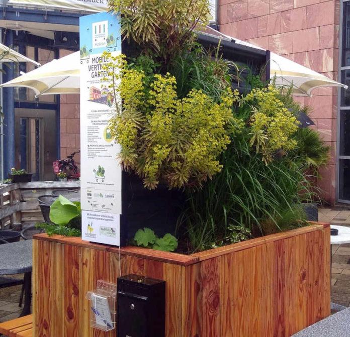 Der mobile Garten soll an heißen Tagen für Kühlung sorgen. (Foto: Stadtverwaltung Neustadt)