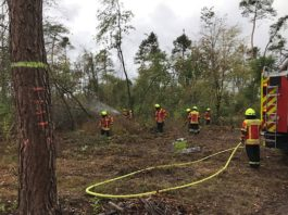 Waldbrände gilt es zu vermeiden. (Foto: Forstamt Landratsamt Karlsruhe)