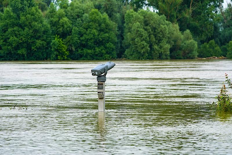 Rhein-Hochwasser bei Speyer (Foto: Holger Knecht)