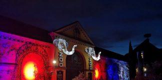 Vom 1. Oktober bis zum 28. November 2021 findet im Zoo Heidelberg das Heidelberger Zoo-Leuchten statt. (Foto: Zoo Heidelberg)