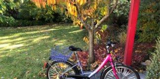 Aufgefundenes Fahrrad (Foto: Polizei RLP)